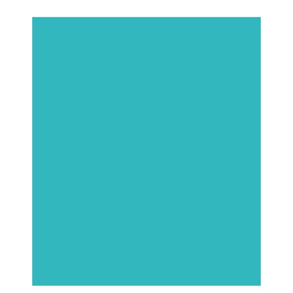 ambiente-zaunbau-zaun-des-jahres-2021-icon-sicherheitssystem